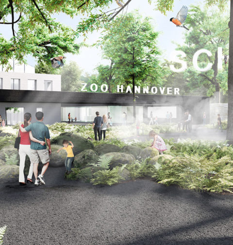 Projektbild_oben_Eingang_Wald